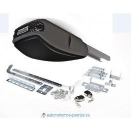 Kit motor para puerta seccional o puerta basculante MOTORLINE 100N, dos mandos a distancia, caña de aluminio
